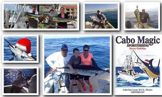 Cabo Magic Guest Collage